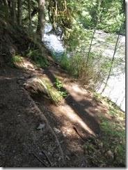 lewis river falls 22