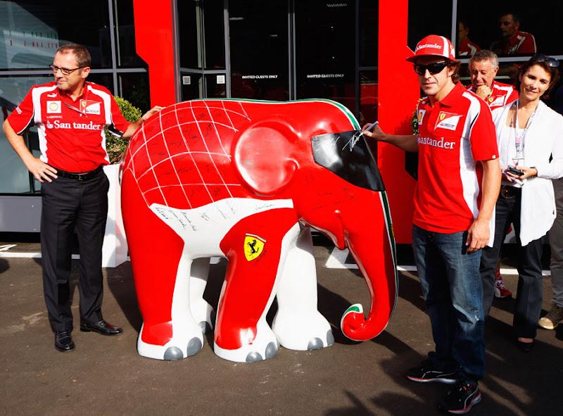 Фернандо Алонсо подписывает слона Ferrari на Гран-при Италии 2011