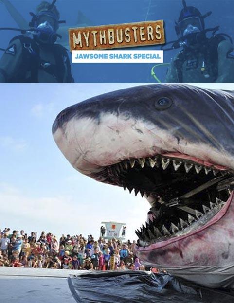 Pogromcy mit�w i rekiny / MythBusters Jawsome Shark Special (2012) PL.TVRip.XviD / Lektor PL