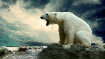 Polar-Bear-Angry