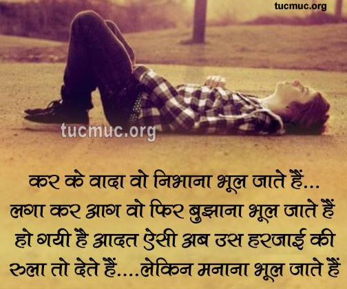 Shayari About Different aspect of Life  Graphics
