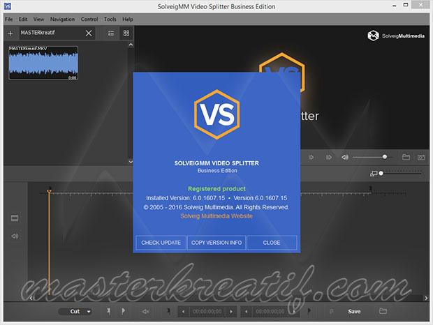 SolveigMM Video Splitter 6