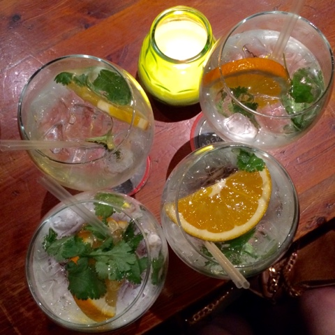 Copperhead gin and tonics with different blends