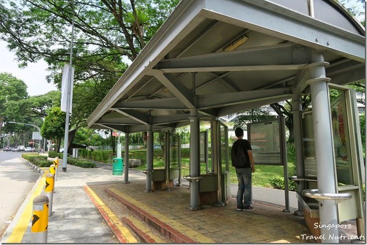 新加坡花柏山 (86)