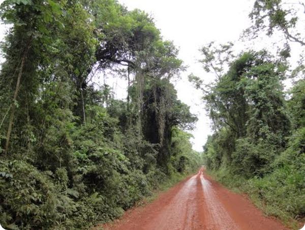 parque nacional yacuy
