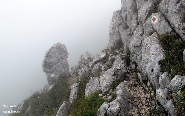 Piatra-Craiului-Nordica-7010.jpg