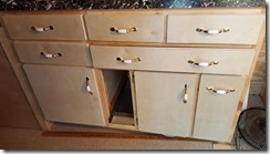 Kitchen cabinets with pantry out