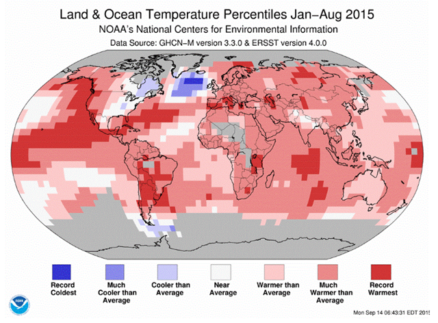 Land and ocean temperature percentiles for January-August 2015. Graphic: NOAA