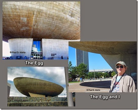 The Egg Collage