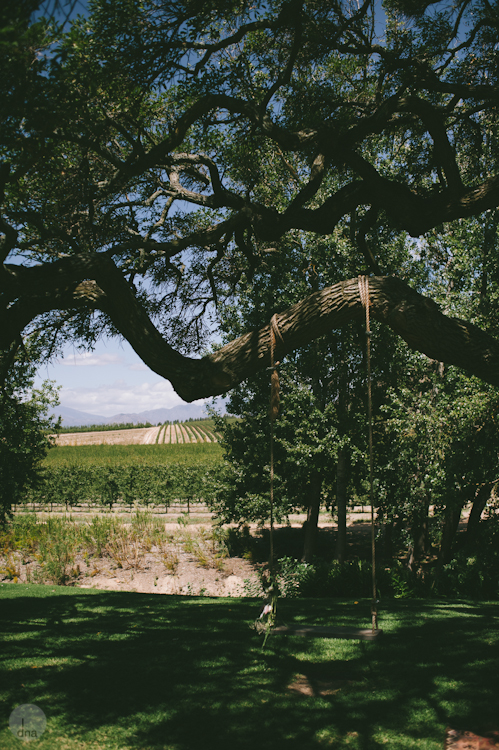 Paige and Ty wedding Babylonstoren South Africa shot by dna photographers 21.jpg
