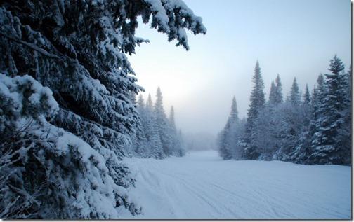 paisajes navidad (20)