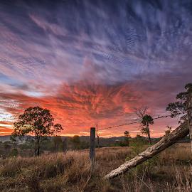 A new dawn by Rob Crutcher  - Landscapes Sunsets & Sunrises ( countryside, sky, dawn, colorful, australia, sunrise, landscape, rural )