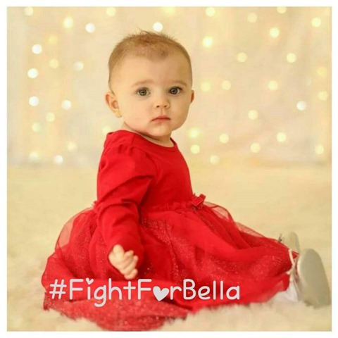 Fight for Bella