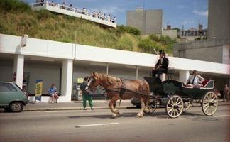 1988.07.10-072.32 voiture hippomobile