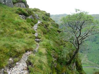 A tricky path!!