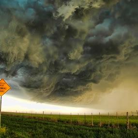 Blowing Dust Gust Front by Melanie Metz - Landscapes Weather ( sand, wind, blowing, shelf cloud, thunderstorm, gust front, severe storm, dust, weather, supercell, nebraska, rain )
