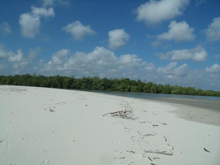 Praia de Igarapé Grande - Maranhao, foto: Suelenilson Martins/Panoramio