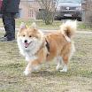 Catey 2012-03-03 4.jpg