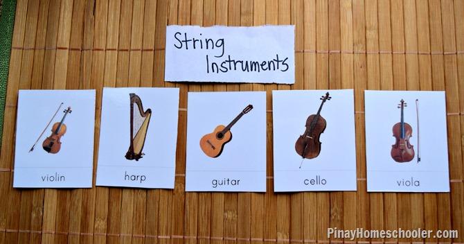 String Insturments
