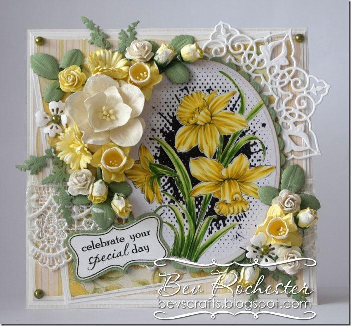 bev-rochester-noor-daffodils
