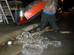 the red carpet ice sculpture had it's moment of beauty...then got thrown out with the trash
