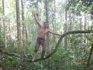 Penjga Hutan Lindung Tormatutung