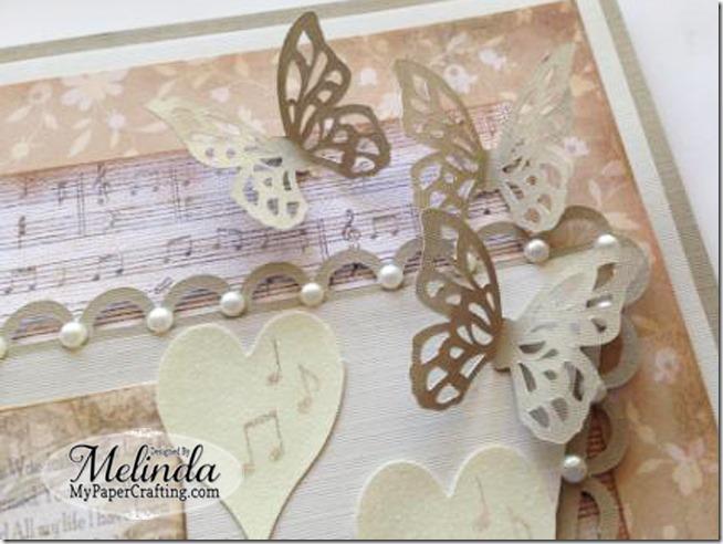 butterflies-650