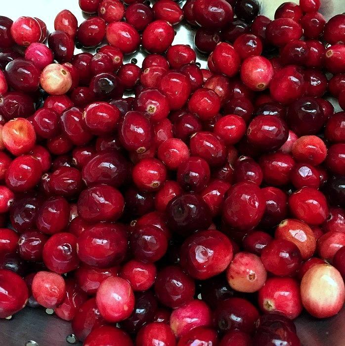 Cranberry Conserve by homework - carolynshomwork (5)