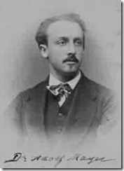 adolf mayer mozaic tembakau