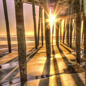 Under the pier by David Pratt - Buildings & Architecture Bridges & Suspended Structures ( hdri, hdr, suspended structure, pier, sunshine, beach, sunrise, light, shadows, sun )