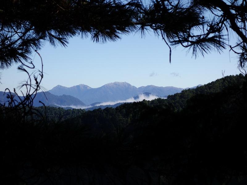 2013_1126-1129 鹿林山-1_247
