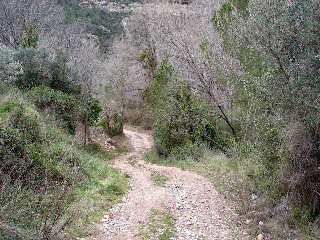 senderismo - Cirat - Campero - Arañuel