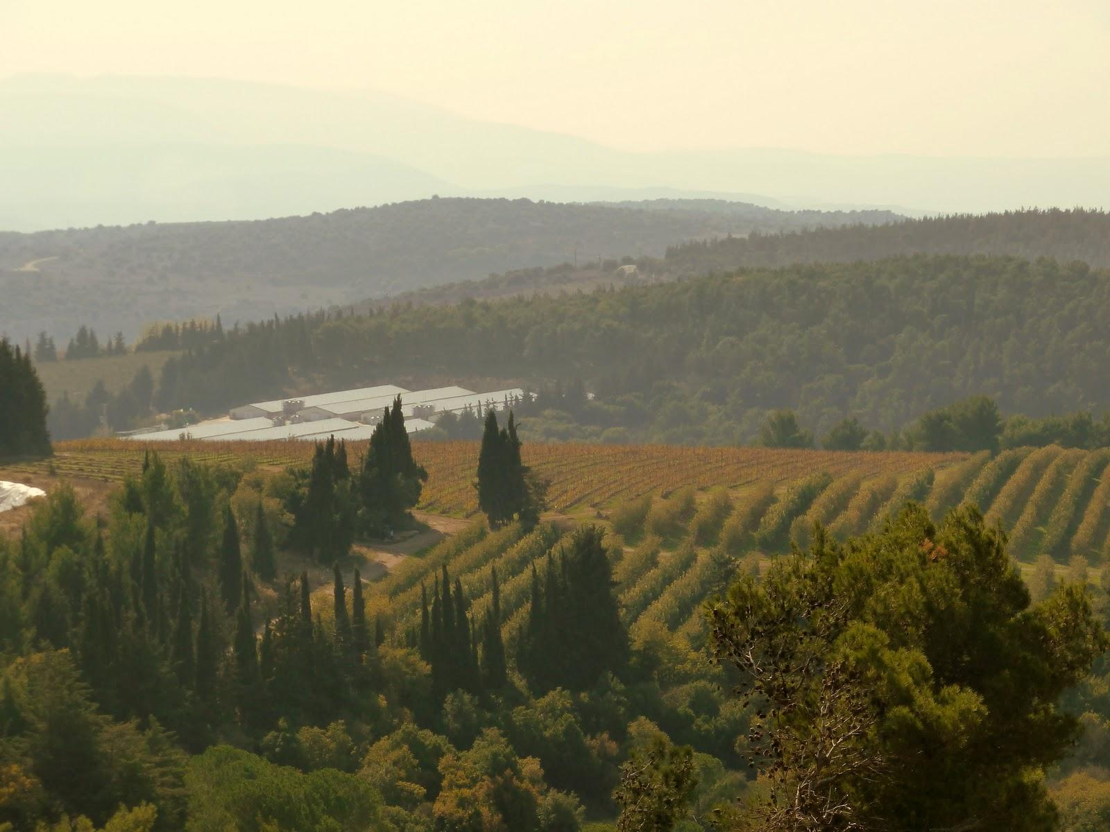 Tuscany in Israel, indeed