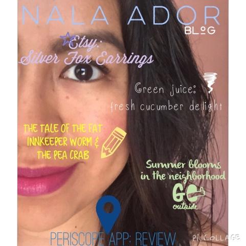 blog-cover-nala-ador-blog-magazine-inspired