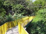 沿著黃色欄杆一直走,一直走。