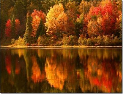 autumn_006