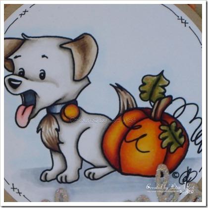 Harvest Puppy (2)