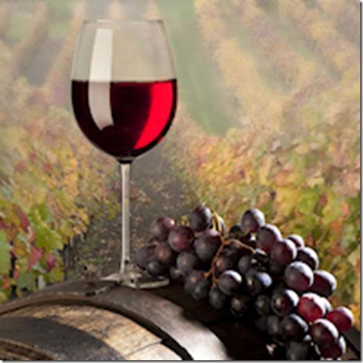 200por200-vinho-e-delicias