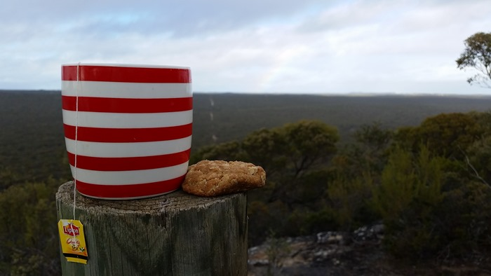 virtù - a cuppa at the Eyre Bird Observatory