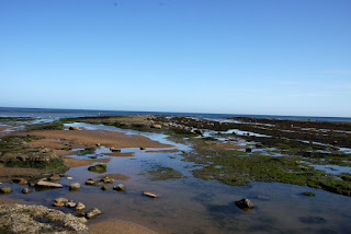 Rock pools abound here - Robin Hoods Bay