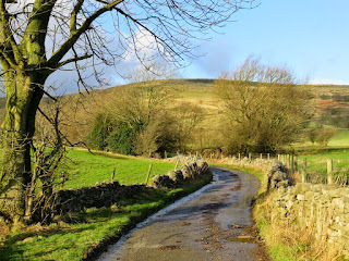 A Lane Near Castleton In The Sunshine
