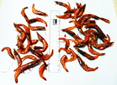 red-dry-prawns-shrimps-small (2)
