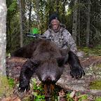 14 AB Bear LR.jpg