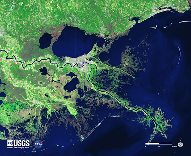 A satellite image of the lower Mississippi River (winding dark line) shows that south of New Orleans (white, at center) the wetlands (green) are severely tattered, allowing hurricanes and other storms to push surges of water from the surrounding Gulf of Mexico right into the city, largely unimpeded. Photo: USGS / NASA