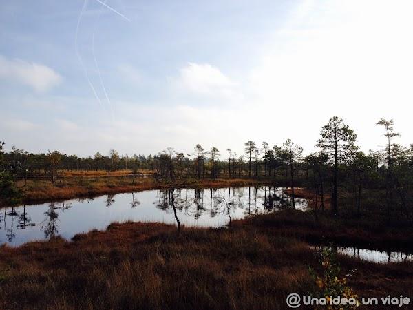 recorrido-paises-balticos-top-3-parques-naturales-unaideaunviaje.com-27.jpg