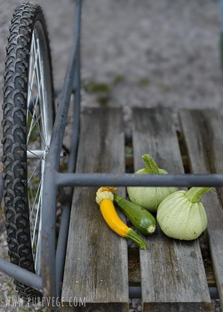 3-zucchini
