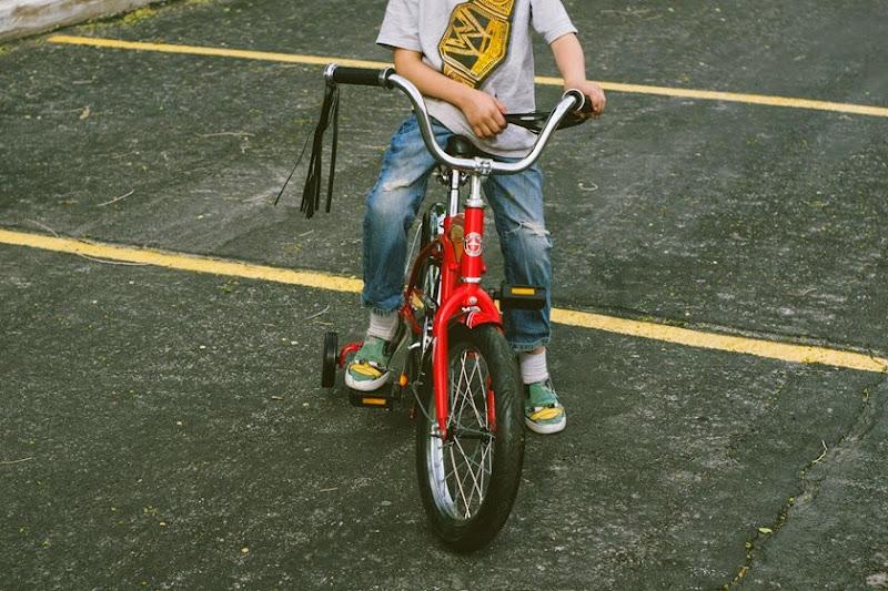 biketrailer5