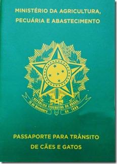 Passaporte-Fredy3