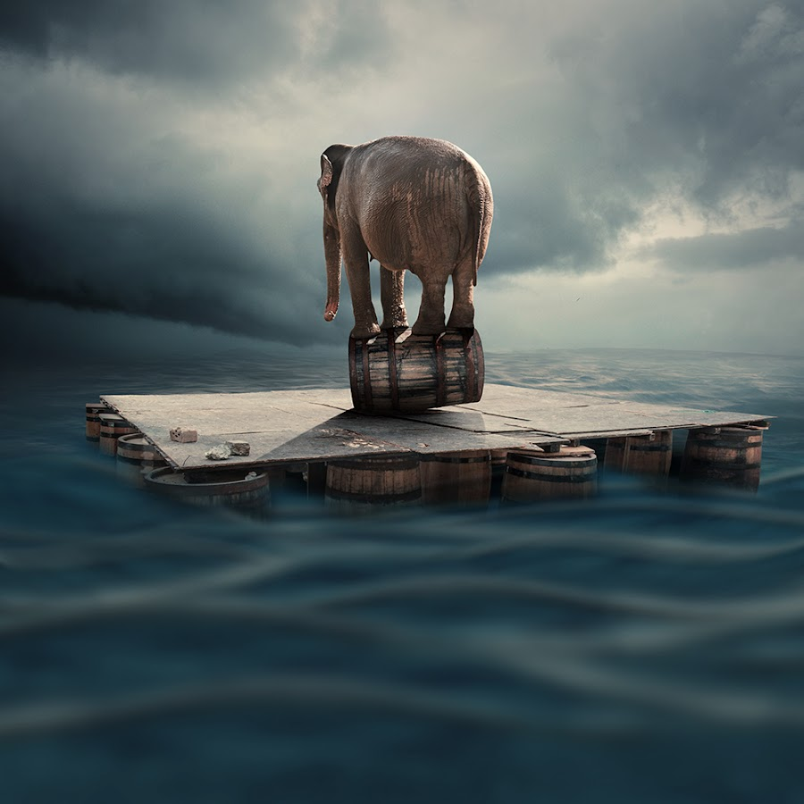 Equilibrum by Caras Ionut - Digital Art Things ( water, clouds, tutorials, elephant, manipulation, psd, sky, plane, shadow, floting, drum, equlibrum, light )
