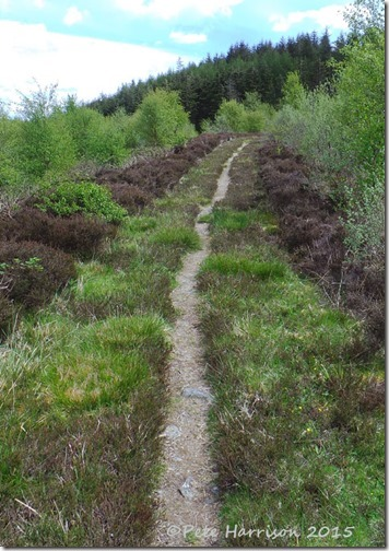 16-Glenwhan-Moor